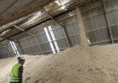 Planta Biomasa Viñales