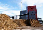cogeneracion biomasa